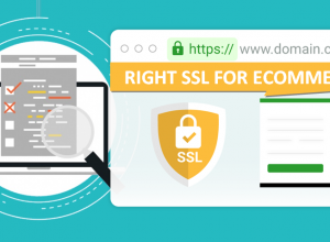 choose right SSL
