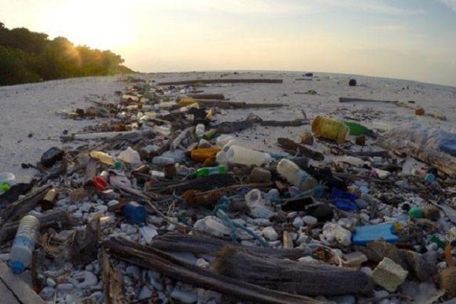 plastic water bottles